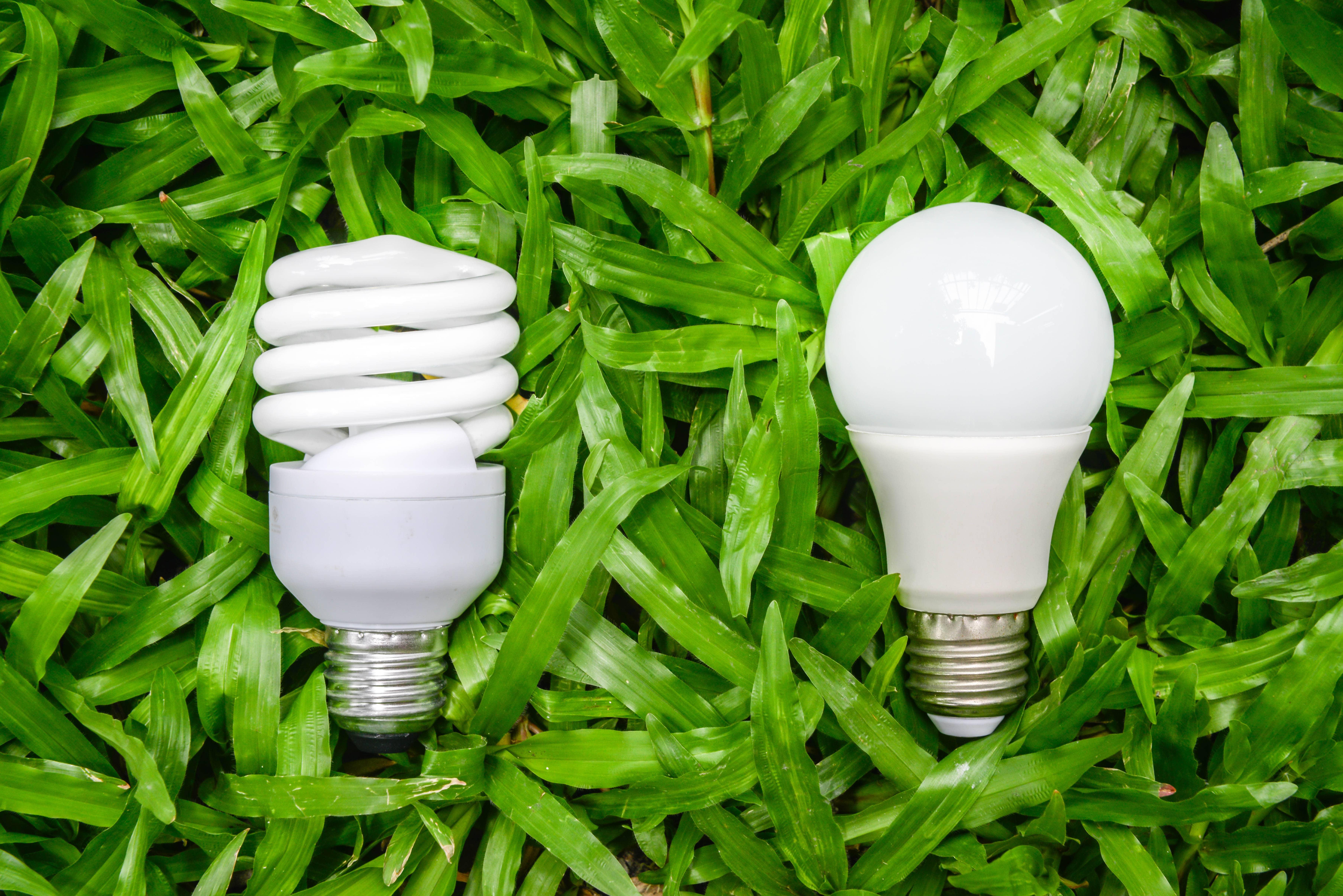 Home Residential Energy Efficient Lighting